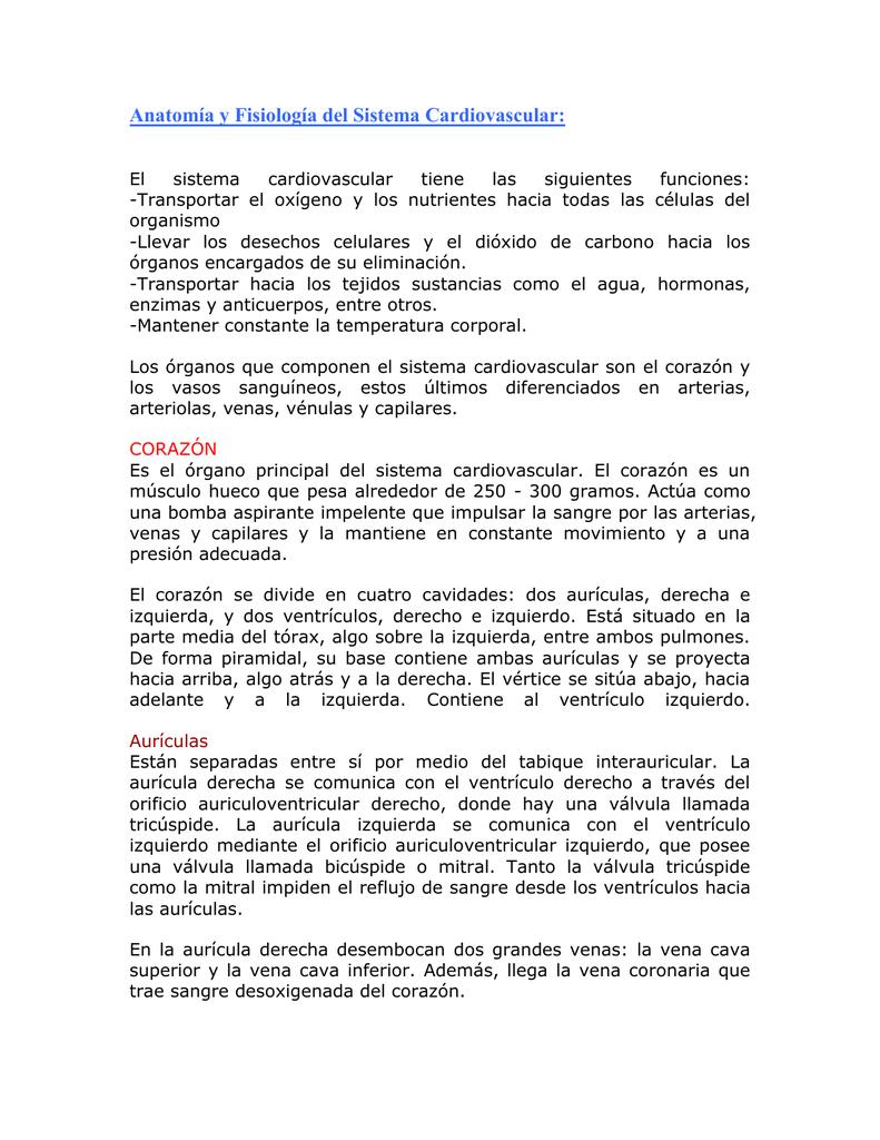 Magnífico Funciones Del Sistema Cardiovascular Ideas - Imágenes de ...