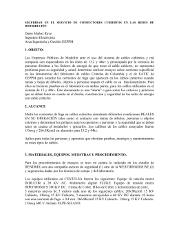 SEGURIDAD EN EL SERVICIO DE CONDUCTORES CUBIERTOS