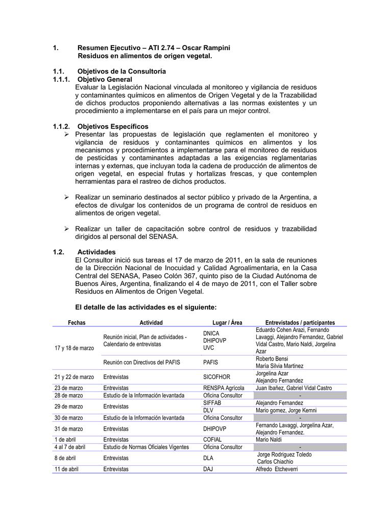 Contemporáneo Informe La Plantilla De Resumen Ejecutivo Friso ...