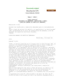 Resolución S/N Documento original