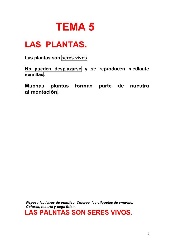 Tema 5 Las Plantas Las Palntas Son Seres Vivos