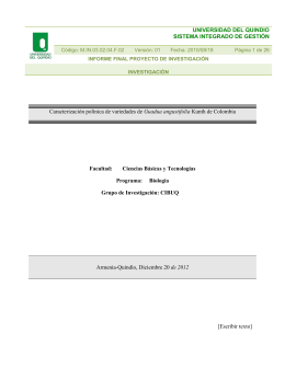 informe final proyecto 522