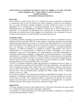 EFECTO DE LOS FLAVONOIDES 4`, 5, 7