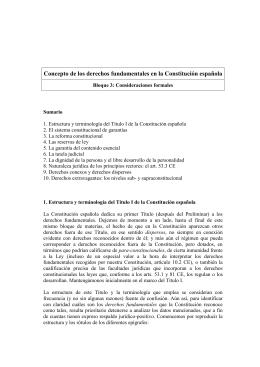 Concepto de los derechos fundamentales en la Constitución