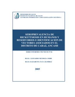 formato para informe tecnico final