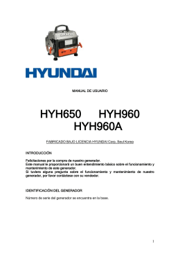 combustible - Hyundai Power Products
