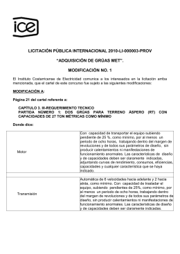 """LICITACIÓN PÚBLICA INTERNACIONAL 2010-LI-000003-PROV  """"ADQUISICIÓN DE GRÚAS MET"""". MODIFICACIÓN NO. 1"""