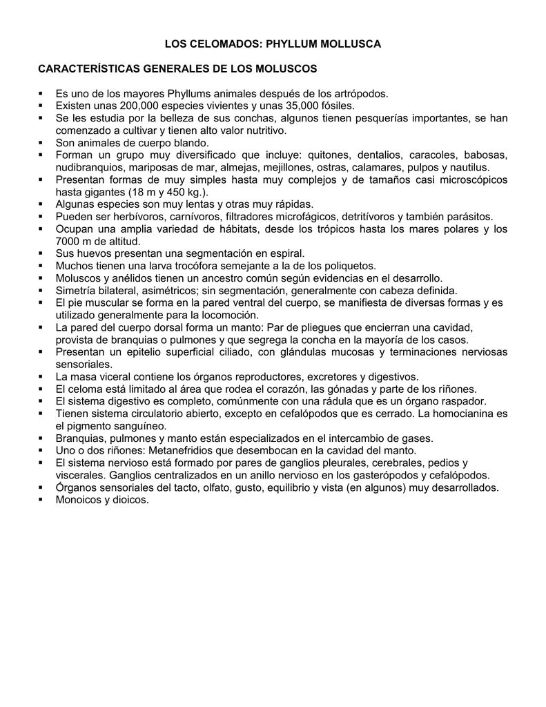 características generales de los moluscos