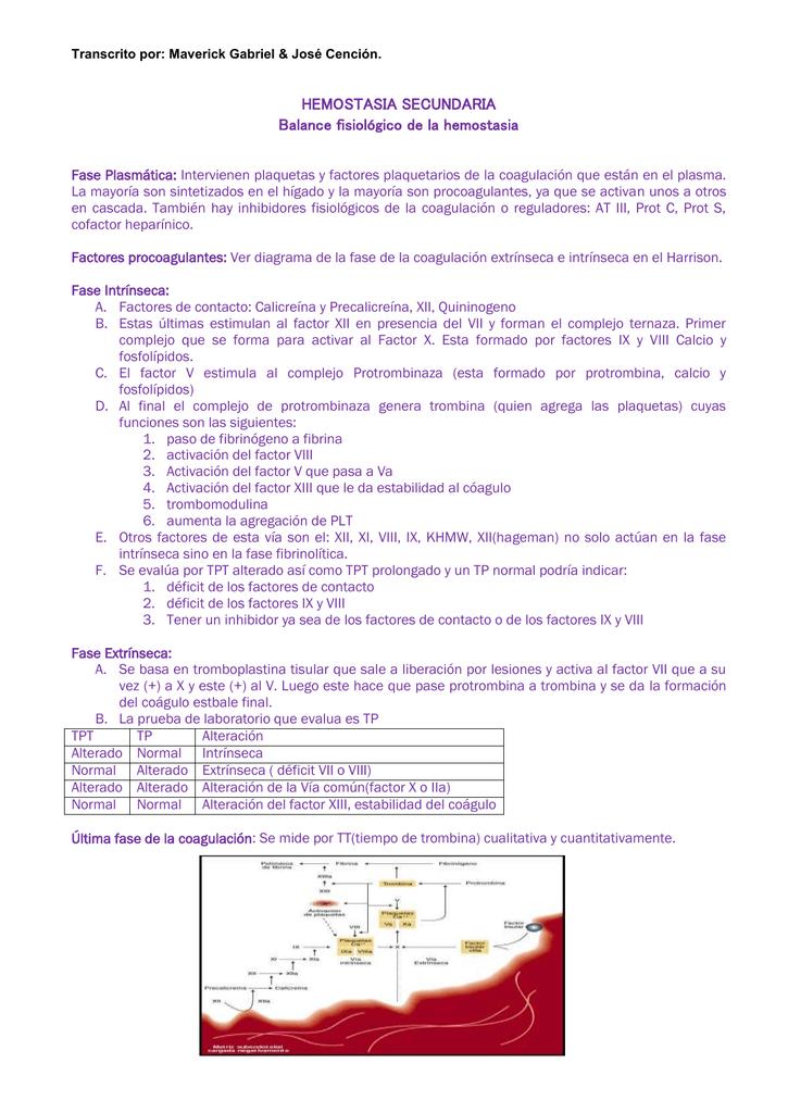 Factores de la hemostasia secundaria