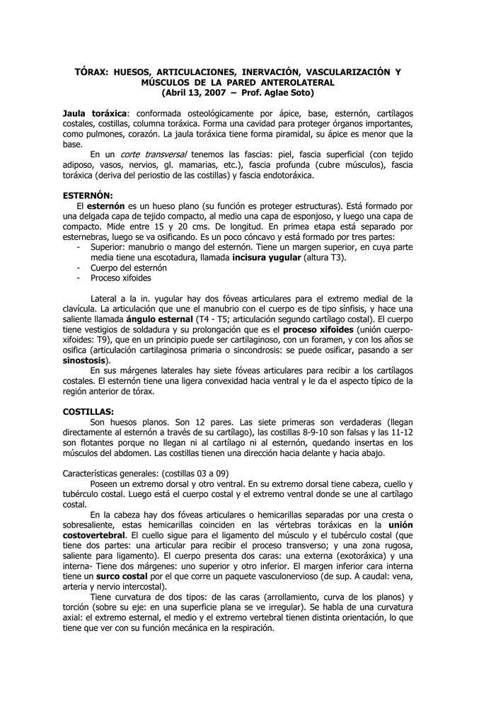 TÓRAX: HUESOS, ARTICULACIONES, INERVACIÓN