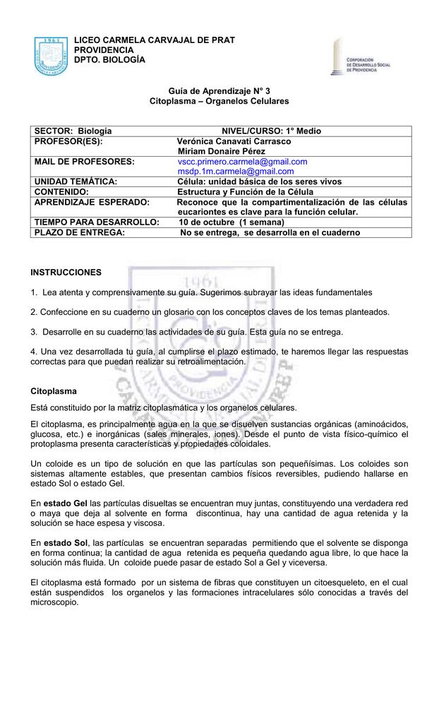 Guianº3_Biologia_LCCP_1ºMedio