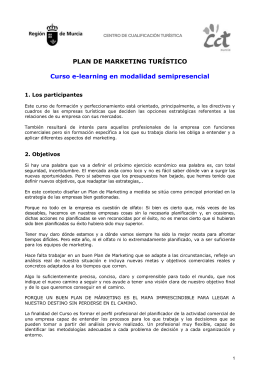 PLAN DE MARKETING TURÍSTICO  Curso e-learning en modalidad semipresencial 1. Los participantes