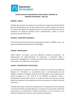 bases convocatoria menores ongs-2014