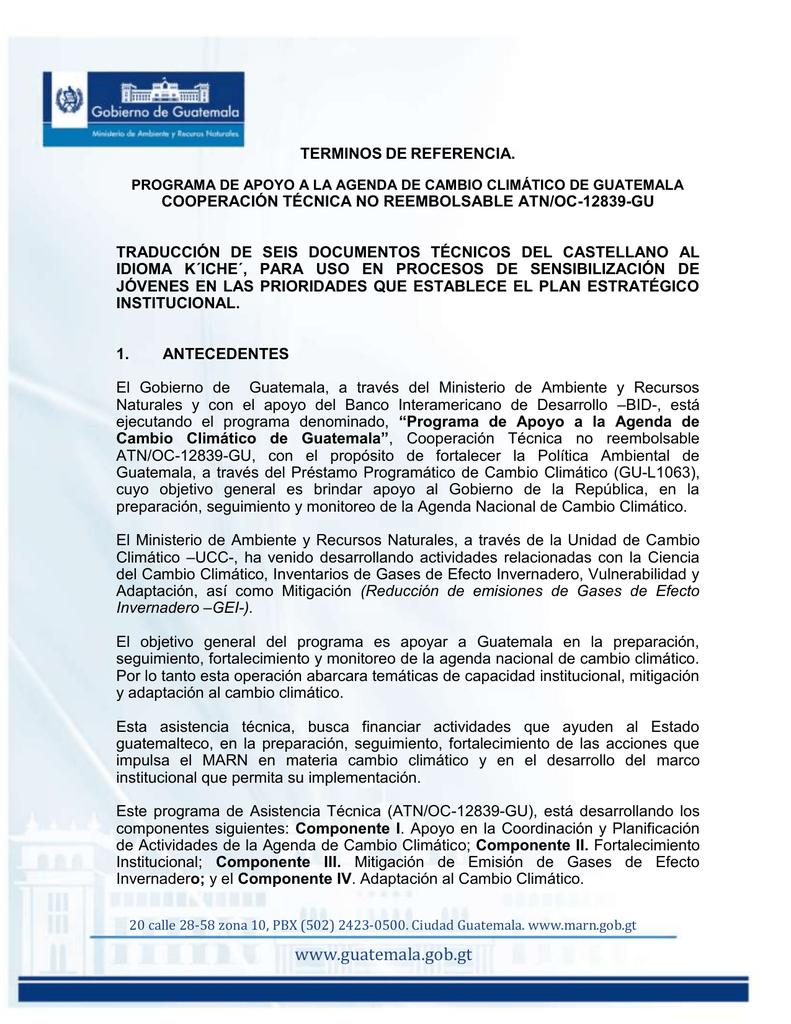 TDRs_traduccion_KICHE - Ministerio de Ambiente y Recursos