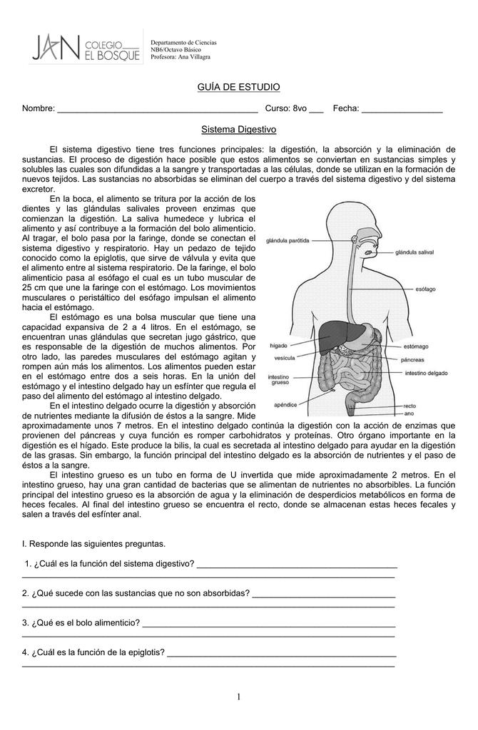 Famoso Guía De La Anatomía Y La Fisiología Del Sistema Esquelético ...