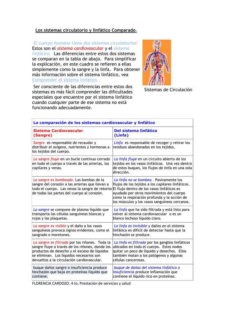 Los sistemas circulatorio y linfático Comparado