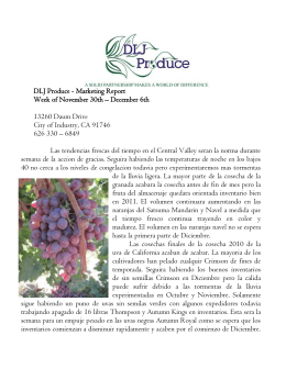 DLJ Produce - Marketing Report 13260 Daum Drive