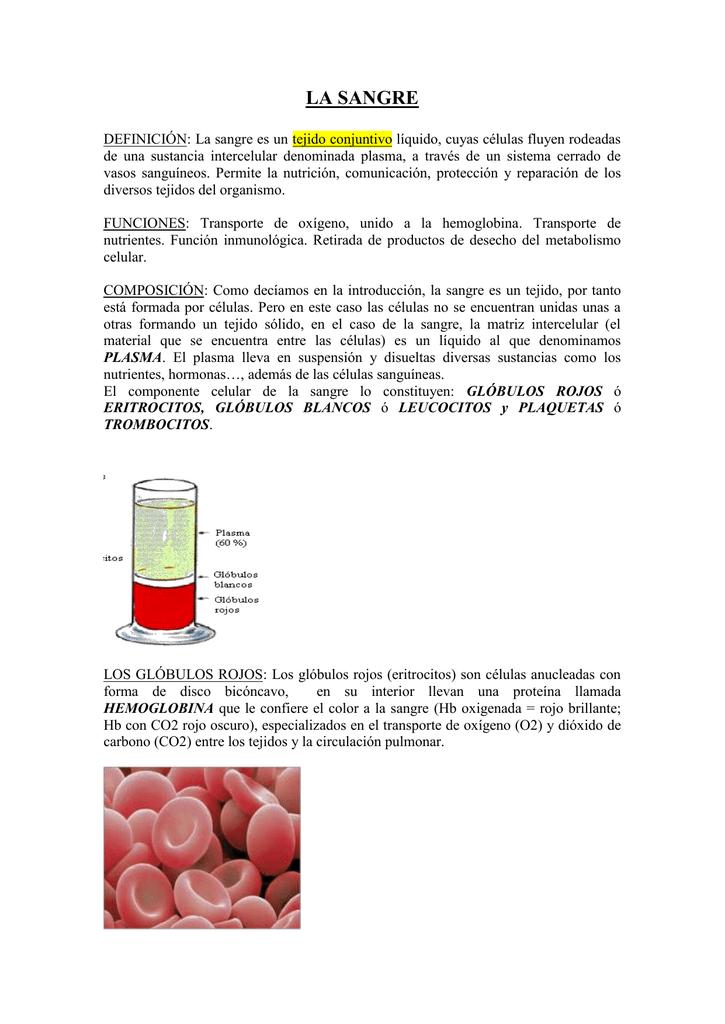 LA SANGRE DEFINICIÓN: La sangre es un tejido conjuntivo..