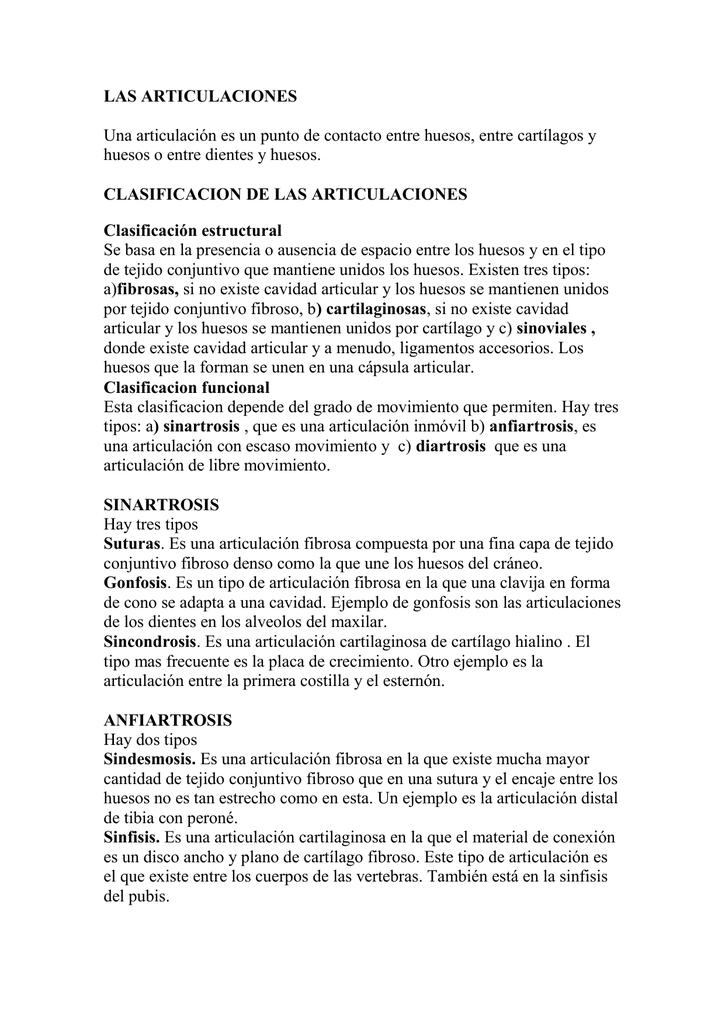 clasificacion de las articulaciones
