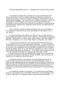 Revisión bibliográfica (parte I):  actualidad en los estudios del... Los canales de potasio BK, conocidos por su alta conductancia...