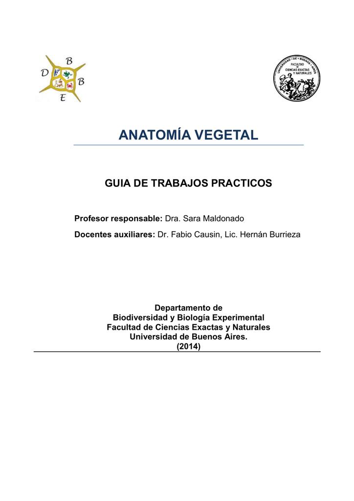 ANATOMÍA VEGETAL GUIA DE TRABAJOS PRACTICOS