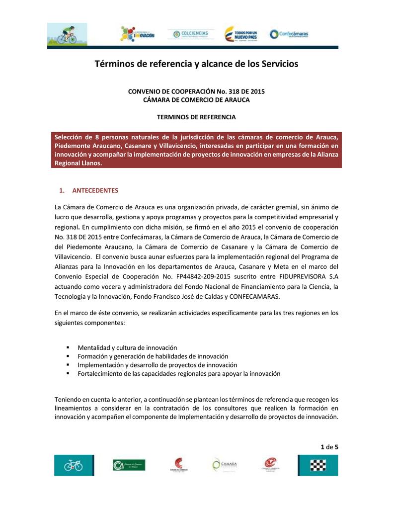 terminos de referencia - Cámara de comercio de Arauca