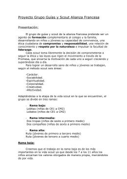 requisitos para los rangos boy scout