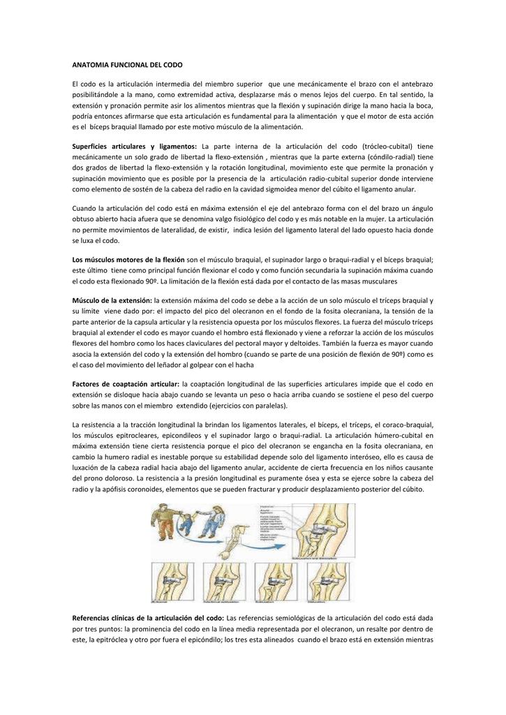 ANATOMIA FUNCIONAL DEL CODO