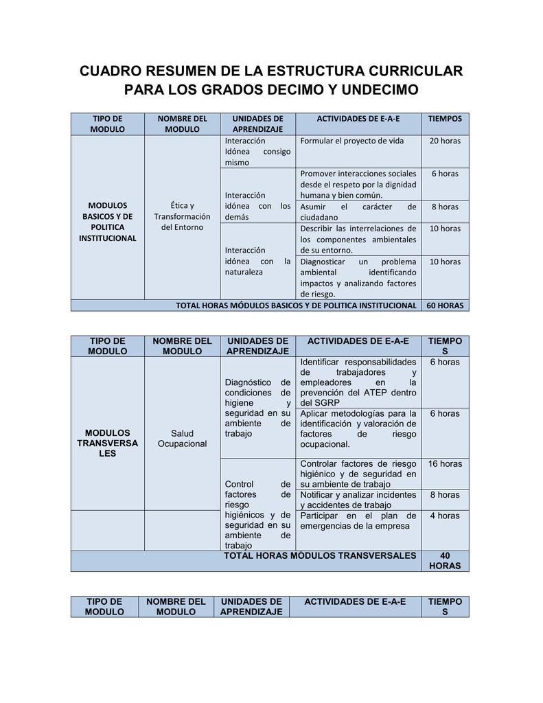 Cuadro Resumen De La Estructura Curricular