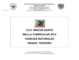 "INSTITUCIÓN EDUCATIVA DEPARTAMENTAL ""RINCON SANTO"""