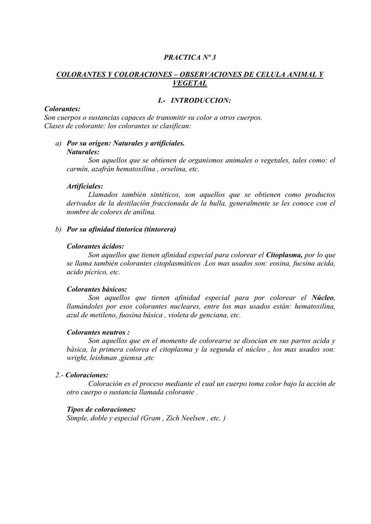 PRACTICA Nº 3 COLORANTES Y COLORACIONES