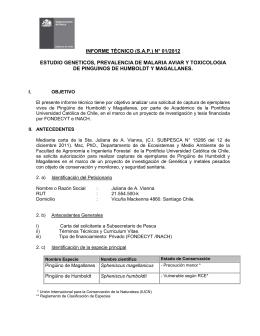 informe técnico (sap) n° 01/2012