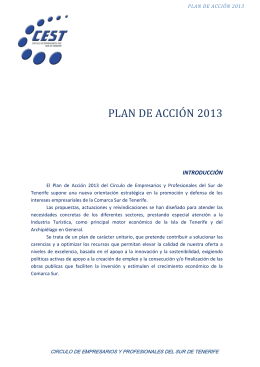 plan of action 2014 - Círculo de Empresarios de Tenerife