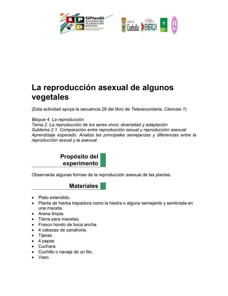Reproduccion asexual de la papa y la zanahoria