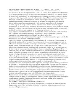 REACCIONES Y TRATAMIENTOS PARA LA SALMONELA Y LA E