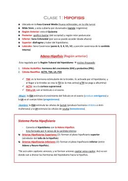Reflejos tallo cerebral pdf