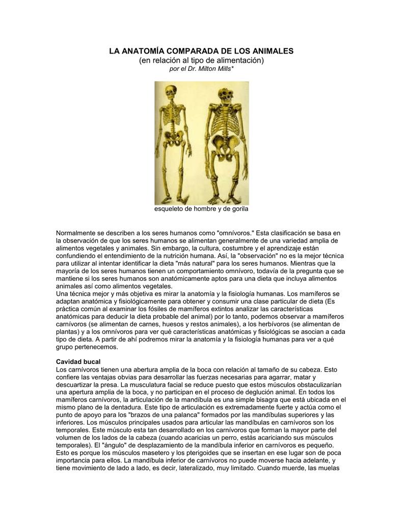 Encantador Definir La Anatomía Comparada Embellecimiento - Imágenes ...