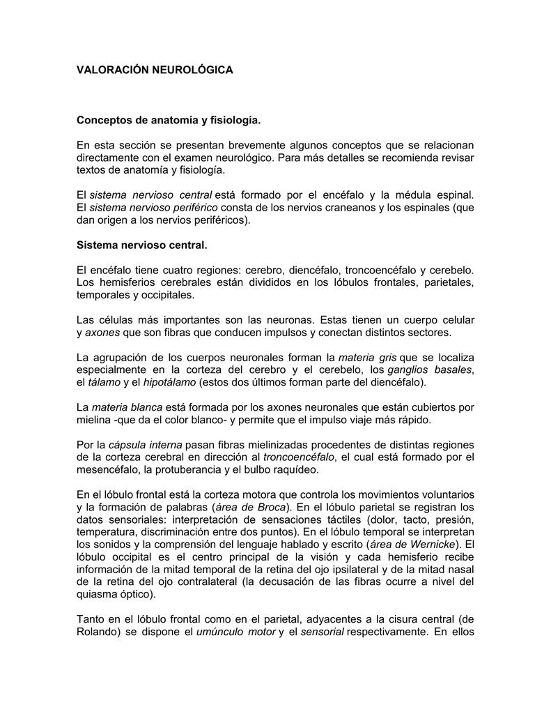 VALORACIÓN NEUROLÓGICA Conceptos de anatomía y fisiología.