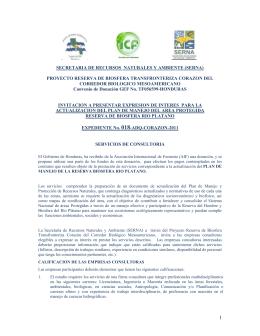 SELECCION DE CONSULTORES POR PRESTATARIOS DEL BANCO