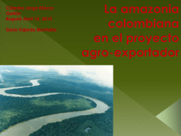 La Amazon a colombiana en la nueva fase agr cola