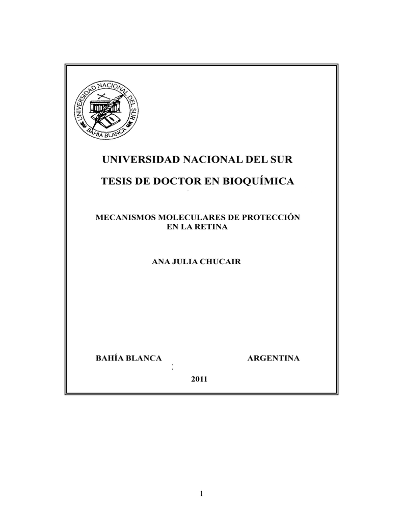 Tesis doctoral Ana Julia Chucair pdf