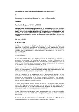 Resolución Conjunta N° 614/1998 y N° 448/1998