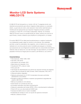 Monitor LCD Serie Systems HMLCD17S