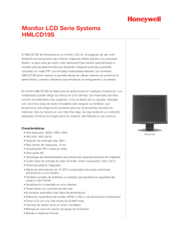 Monitor LCD Serie Systems HMLCD19S