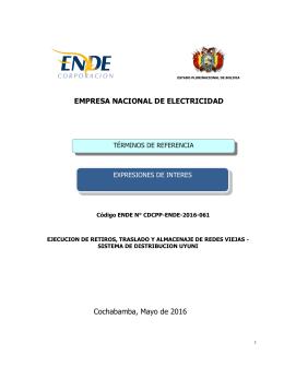 EMPRESA NACIONAL DE ELECTRICIDAD TÉRMINOS DE REFERENCIA EXPRESIONES DE INTERES