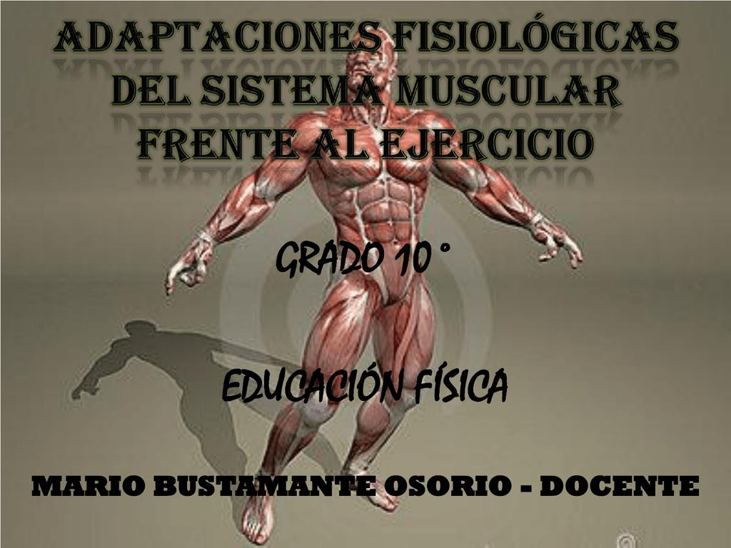 Vistoso Become Anatomía Y Fisiología Capítulo 16 Cresta - Imágenes ...