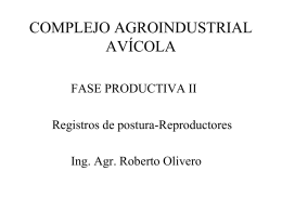 COMPLEJO AGROINDUSTRIAL AVÍCOLA  FASE PRODUCTIVA II