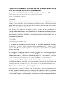 Comportamiento agronómico de cultivares de maíz en el Sur de... la Red INTA Oliveros de maíz de Primera. Campaña 2013/14.