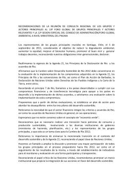 RECOMENDACIONES  DE  LA  REUNIÓN  DE ... ACTORES  PRINCIPALES  AL  13º  FORO ...