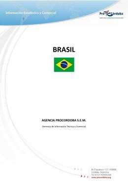 Informe Intercambio Comercial con Brasil